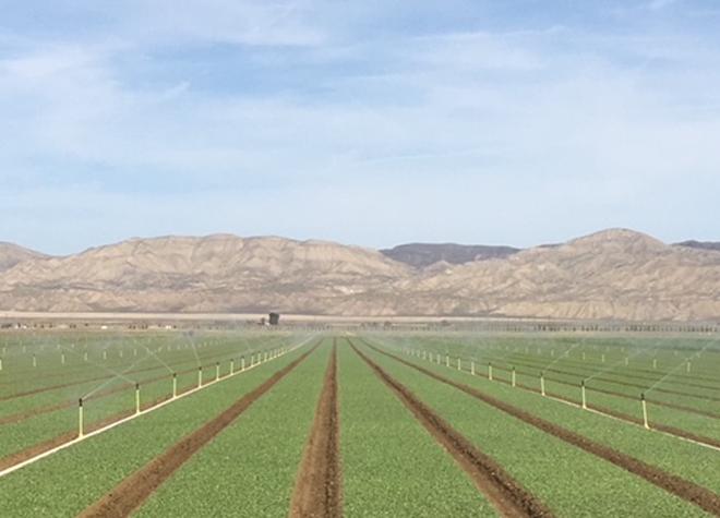 Plantation et semis Trimble